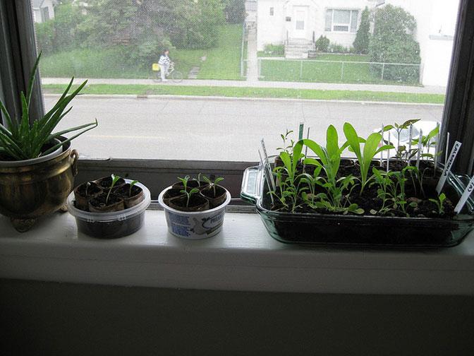 Jardins pequenos para casas e apartamentos vivenda for Apartamentos baratos en sevilla por dias